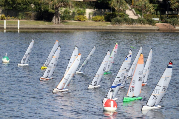 Big Fleet of Dragons for the Queensland Championships